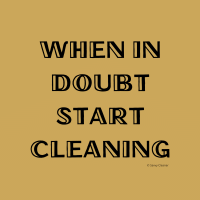 299 When in Doubt Savvy Cleaner Funny Cleaning Shirts A