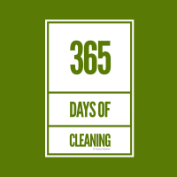 339 365 Days a Year Savvy Cleaner Funny Cleaning Shirts B