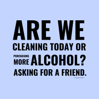 342 Cleaning Today Savvy Cleaner Funny Cleaning Shirts A