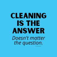 393 Cleaning is the Answer Savvy Cleaner Funny Cleaning Shirts (2)