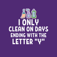 479 Ending in the Letter Y Savvy Cleaner Funny Cleaning Shirts B