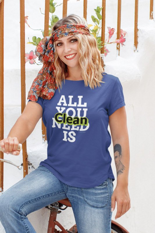 All You Need is Clean Savvy Cleaner Funny Cleaning Shirts Standart T-Shirt