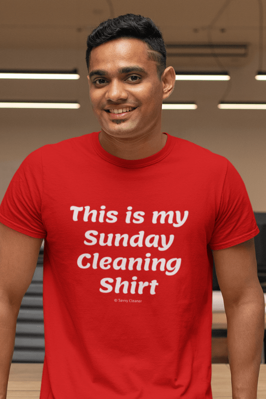 My Sunday Cleaning Shirt, Savvy Cleaner Funny Cleaning Shirt, Premium T-Shirt